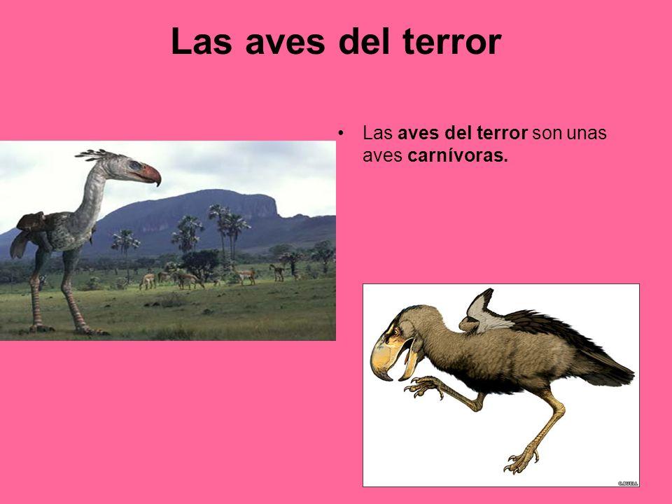 Las aves del terror Las aves del terror son unas aves carnívoras.