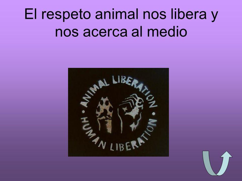El respeto animal nos libera y nos acerca al medio
