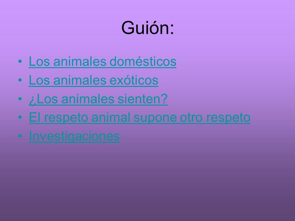 Guión: Los animales domésticos Los animales exóticos ¿Los animales sienten? El respeto animal supone otro respeto Investigaciones