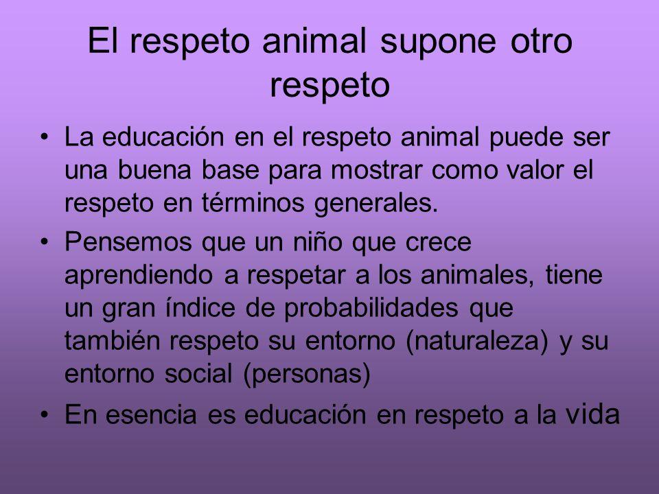 El respeto animal supone otro respeto La educación en el respeto animal puede ser una buena base para mostrar como valor el respeto en términos genera