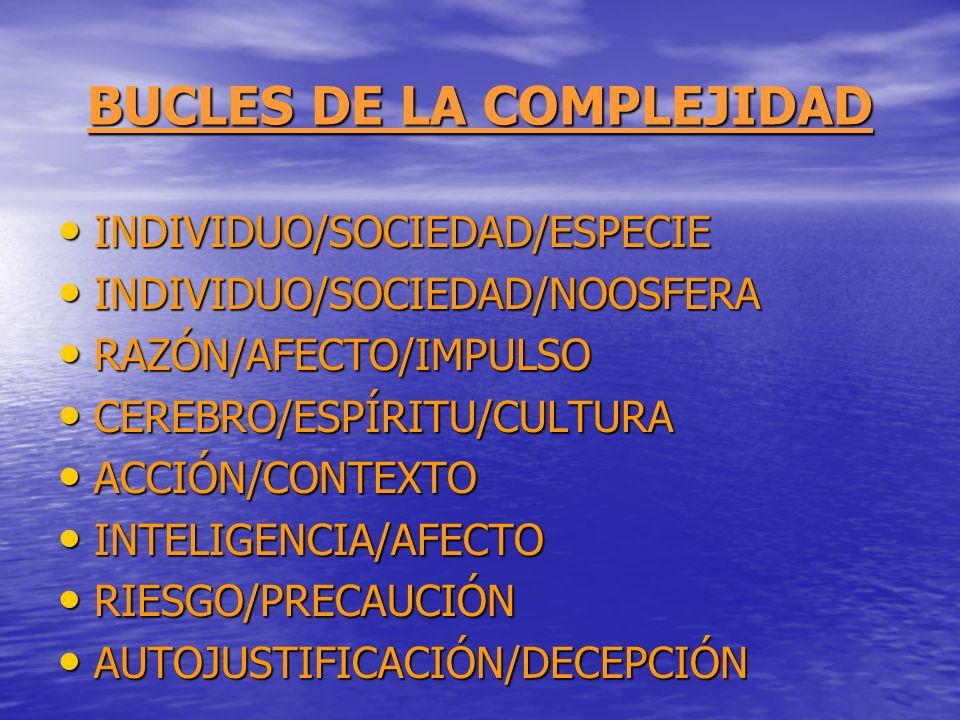 BUCLES DE LA COMPLEJIDAD INDIVIDUO/SOCIEDAD/ESPECIE INDIVIDUO/SOCIEDAD/ESPECIE INDIVIDUO/SOCIEDAD/NOOSFERA INDIVIDUO/SOCIEDAD/NOOSFERA RAZÓN/AFECTO/IM