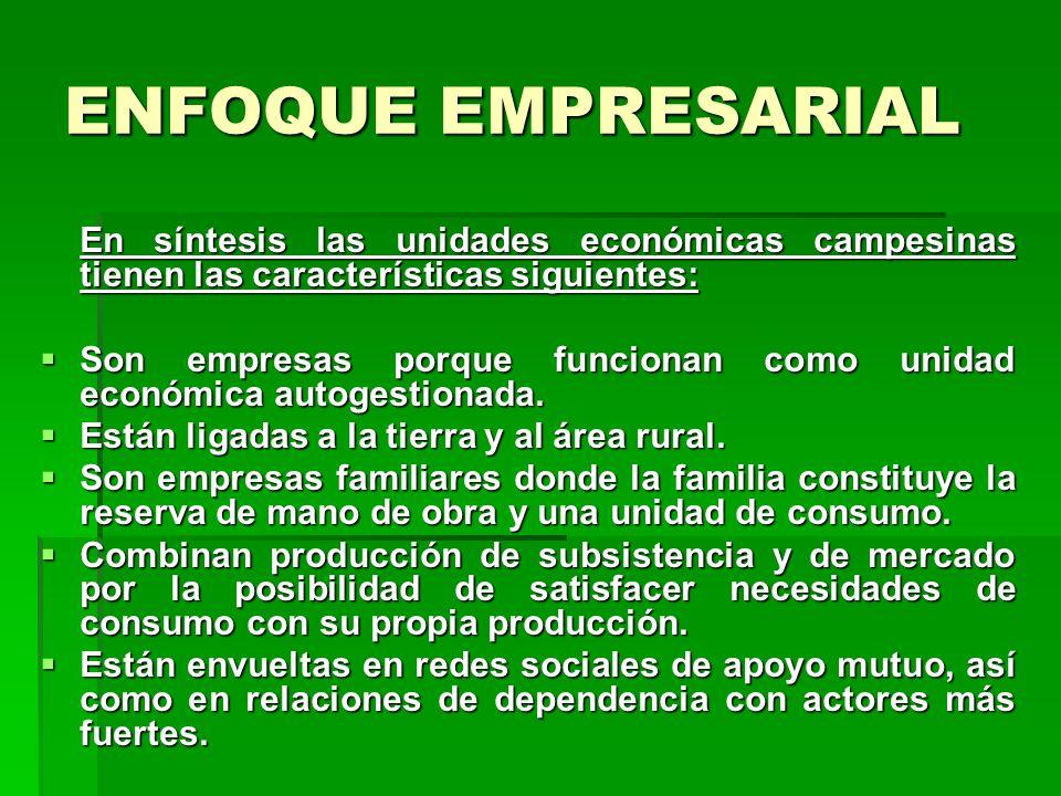 ENFOQUE EMPRESARIAL Una empresa económica – en general - se caracteriza por los siguientes aspectos: Es una unidad económica en la cual trabajan perso