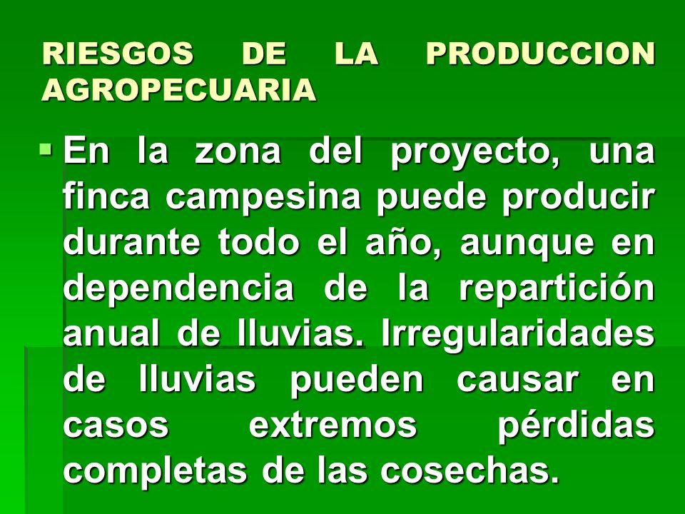 ENFOQUE EMPRESARIAL En síntesis las unidades económicas campesinas tienen las características siguientes: Son empresas porque funcionan como unidad ec