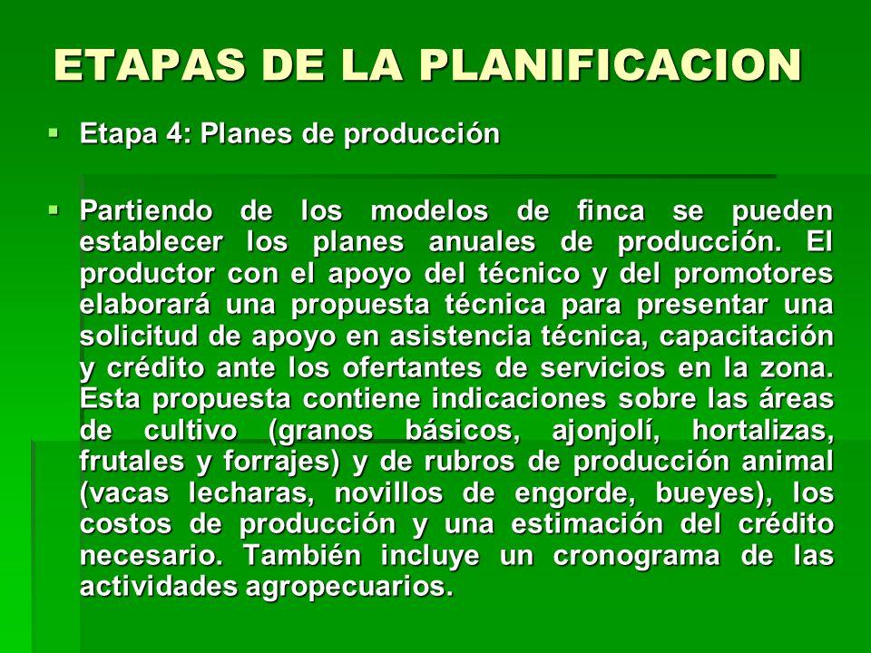 ETAPAS DE LA PLANIFICACION Etapa 3: Definir modelos de fincas familiares Etapa 3: Definir modelos de fincas familiares Los modelos de finca pueden ser