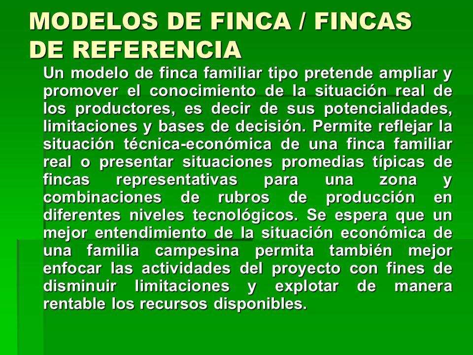 ETAPAS DE LA PLANIFICACION Etapa 4: Planes de producción Etapa 4: Planes de producción Partiendo de los modelos de finca se pueden establecer los plan