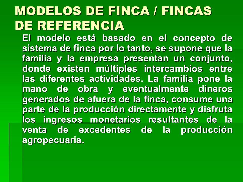 MODELOS DE FINCA / FINCAS DE REFERENCIA Un modelo de finca familiar tipo pretende ampliar y promover el conocimiento de la situación real de los produ
