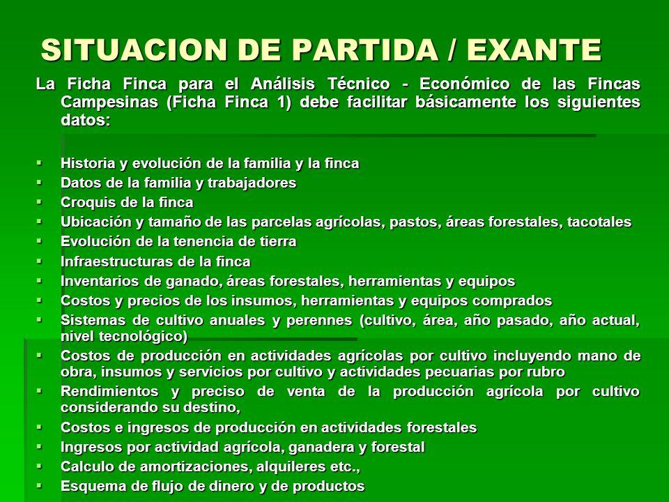 SITUACION DE PARTIDA / EXANTE Se pueden diferenciar principalmente los siguientes pasos de levantamiento de datos de finca: Paso 1: Levantamiento de d