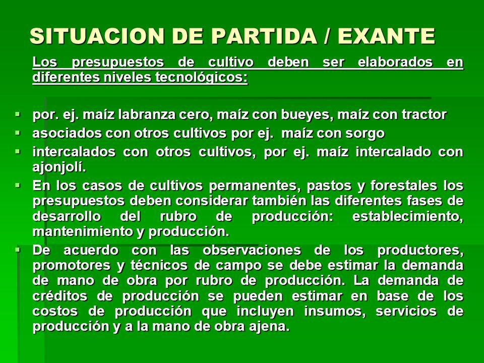 SITUACION DE PARTIDA / EXANTE Presupuestos de cultivo y de ganado Como parte del análisis de finca y sobre la base de los datos mencionados anteriorme