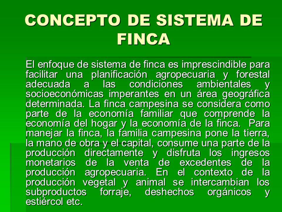 CONCEPTO DE SISTEMA DE FINCA El enfoque de sistema de finca es imprescindible para facilitar una planificación agropecuaria y forestal adecuada a las condiciones ambientales y socioeconómicas imperantes en un área geográfica determinada.
