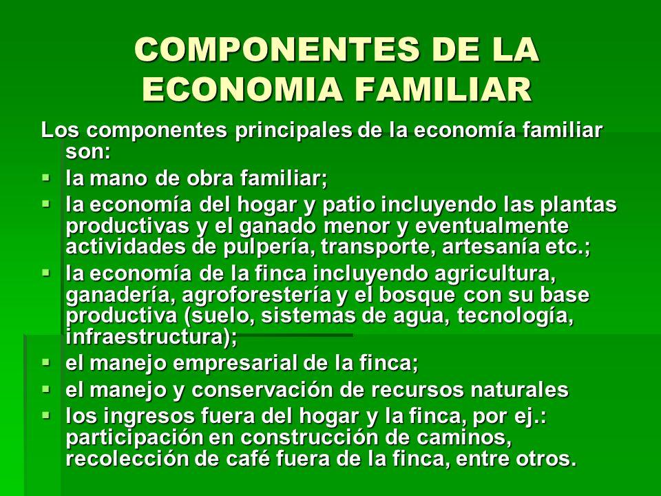 CALCULO DE INGRESOS Los ingresos no agrícolas pueden tener su origen dentro del área del proyecto o fuera de este.