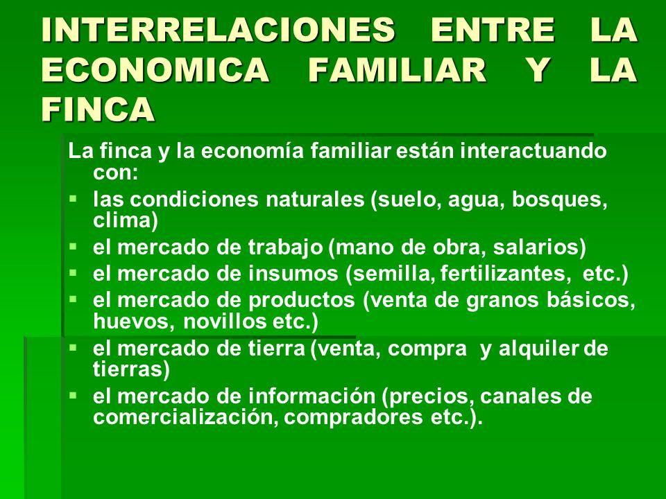 INTERRELACIONES ENTRE LA ECONOMICA FAMILIAR Y LA FINCA La finca y la economía familiar están interactuando con: las condiciones naturales (suelo, agua, bosques, clima) el mercado de trabajo (mano de obra, salarios) el mercado de insumos (semilla, fertilizantes, etc.) el mercado de productos (venta de granos básicos, huevos, novillos etc.) el mercado de tierra (venta, compra y alquiler de tierras) el mercado de información (precios, canales de comercialización, compradores etc.).