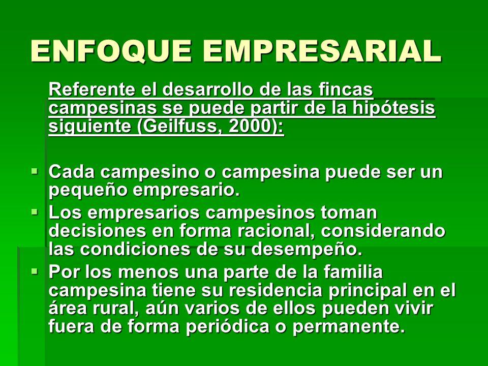 ENFOQUE EMPRESARIAL Referente el desarrollo de las fincas campesinas se puede partir de la hipótesis siguiente (Geilfuss, 2000): Cada campesino o campesina puede ser un pequeño empresario.