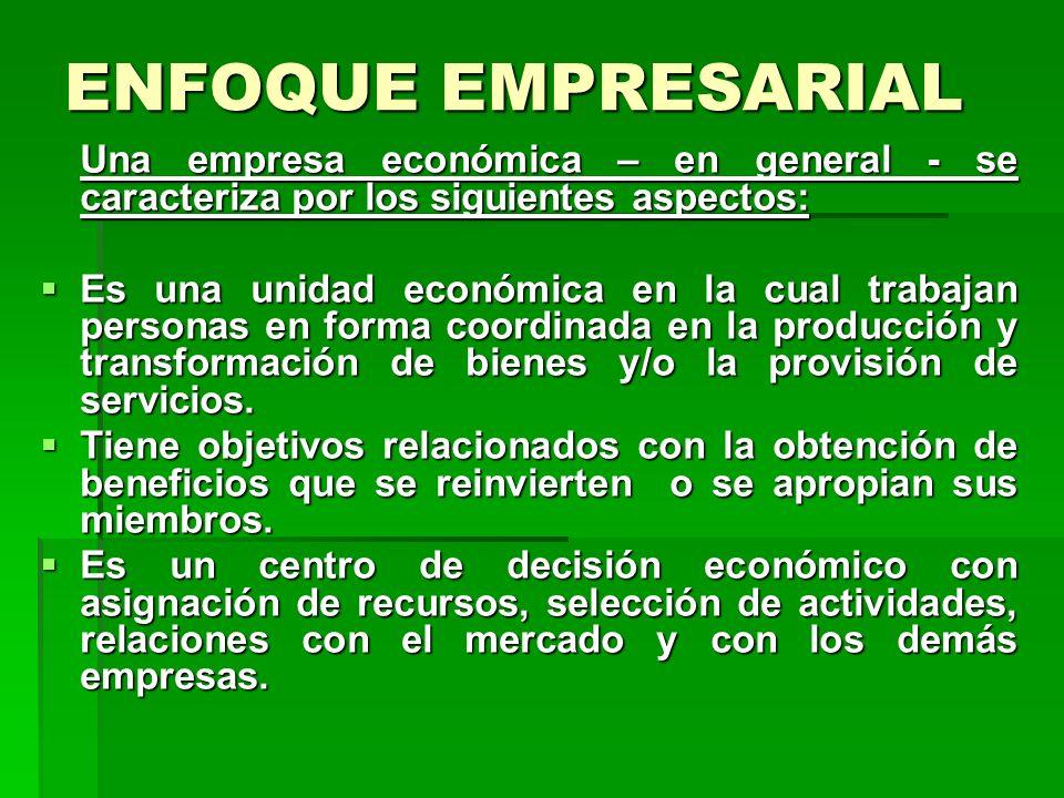 ENFOQUE EMPRESARIAL Una empresa económica – en general - se caracteriza por los siguientes aspectos: Es una unidad económica en la cual trabajan personas en forma coordinada en la producción y transformación de bienes y/o la provisión de servicios.
