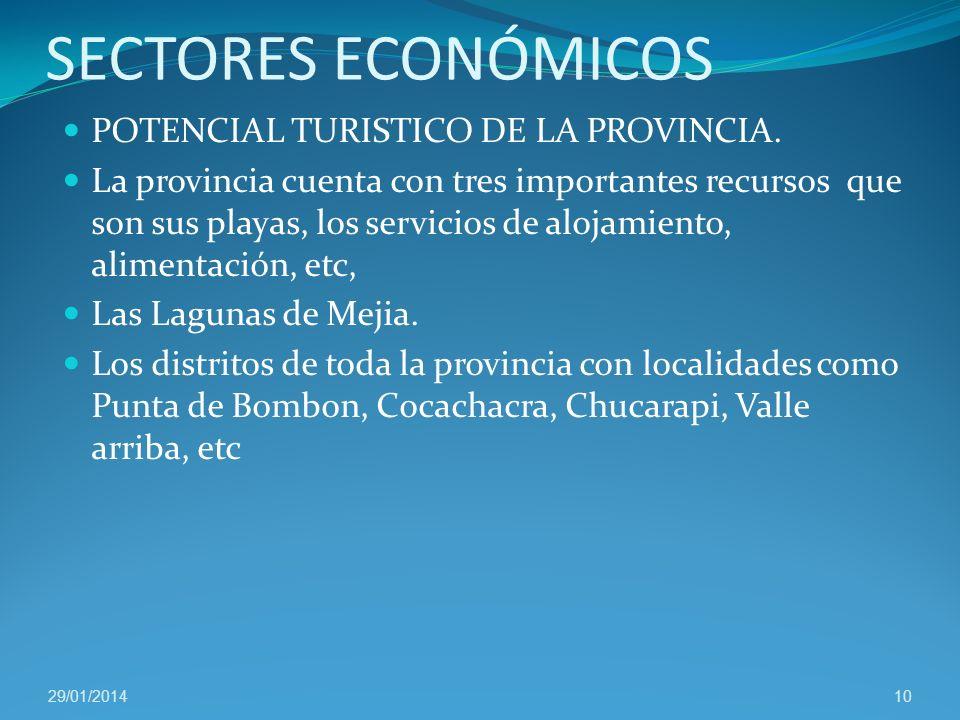 SECTORES ECONÓMICOS AGRICOLA.- Comprende el valle de Tambo y la irrigación Ensenada – Mejia. PECUARIO.- Islay es parte de la cuenca lechera de Arequip