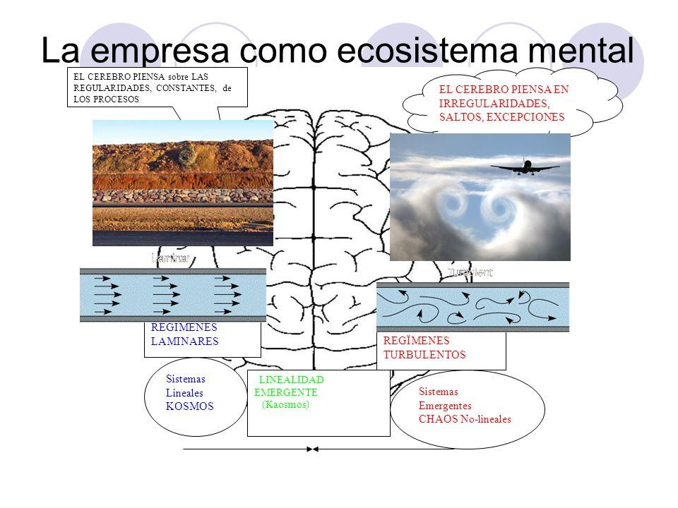 La empresa como ecosistema mental EL CEREBRO PIENSA sobre LAS REGULARIDADES, CONSTANTES, de LOS PROCESOS EL CEREBRO PIENSA EN IRREGULARIDADES, SALTOS,