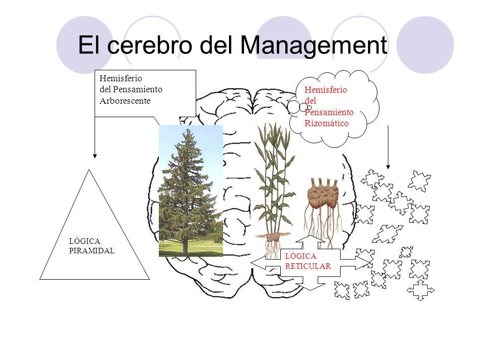 El cerebro del Management Hemisferio del Pensamiento Arborescente Hemisferio del Pensamiento Rizomático LÓGICA PIRAMIDAL LÓGICA RETICULAR