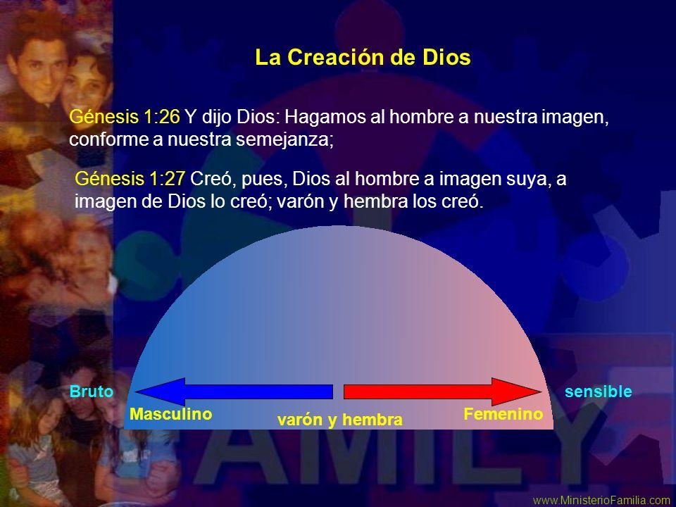 www.MinisterioFamilia.com La Creación de Dios Génesis 1:26 Y dijo Dios: Hagamos al hombre a nuestra imagen, conforme a nuestra semejanza; Génesis 1:27