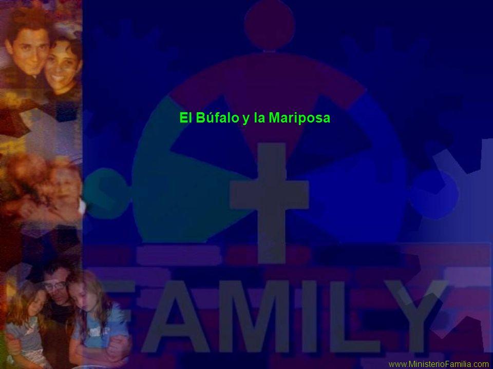 www.MinisterioFamilia.com El Búfalo y la Mariposa