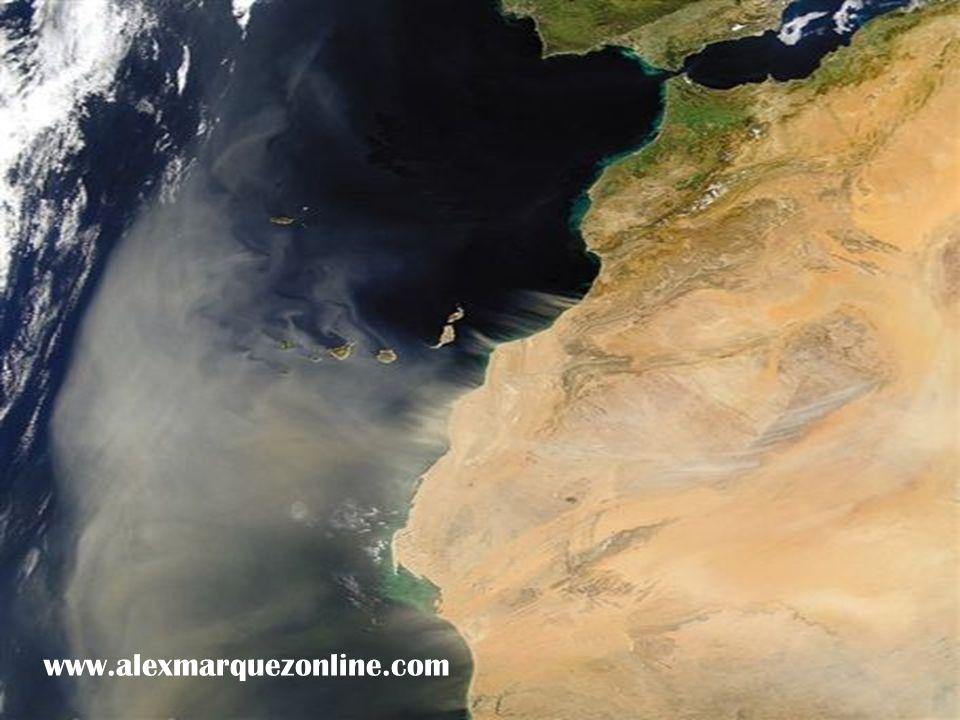 Una tempestad de arena sale del Norte de Africa hacia el Atlántico llegando hasta las Islas Canarias.