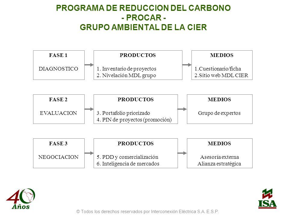 PROGRAMA DE REDUCCION DEL CARBONO - PROCAR - GRUPO AMBIENTAL DE LA CIER FASE 1 DIAGNOSTICO PRODUCTOS 1.