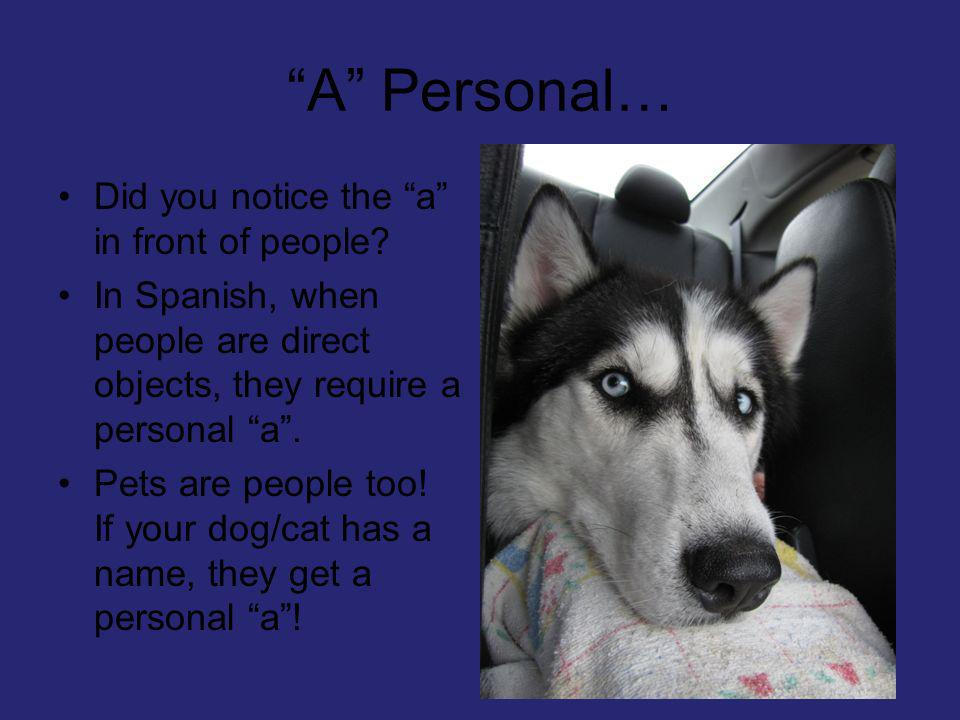A Personal… Did you notice the a in front of people? In Spanish, when people are direct objects, they require a personal a. Pets are people too! If yo