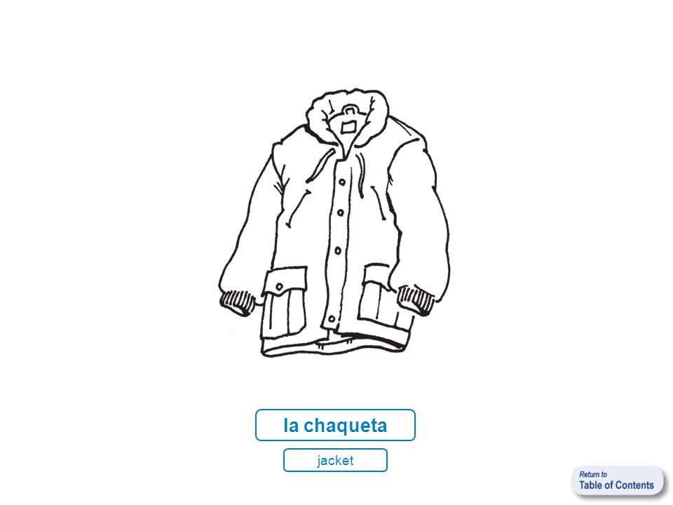 la chaqueta jacket