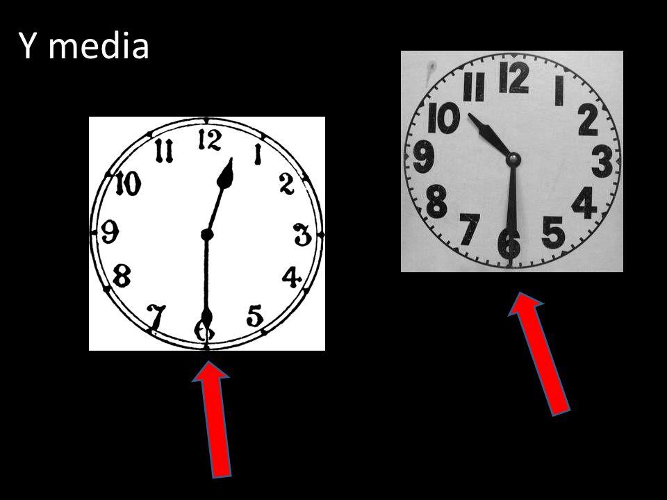 Y media
