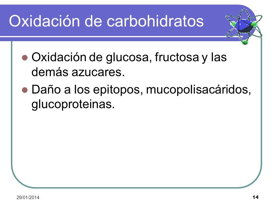 29/01/2014 14 Oxidación de carbohidratos Oxidación de glucosa, fructosa y las demás azucares. Daño a los epitopos, mucopolisacáridos, glucoproteinas.