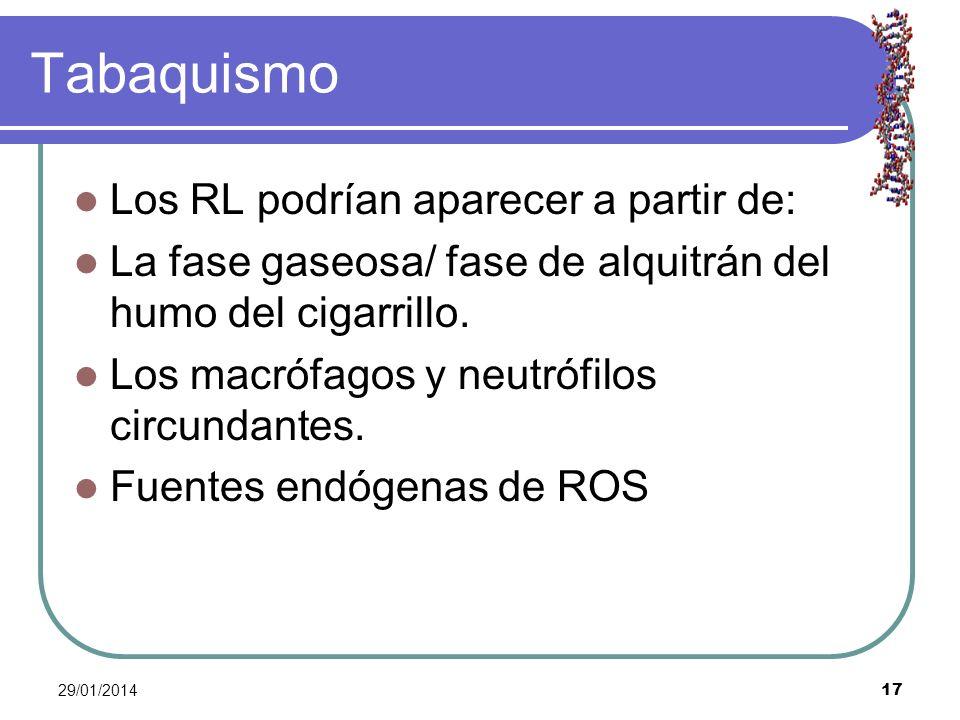 29/01/2014 17 Tabaquismo Los RL podrían aparecer a partir de: La fase gaseosa/ fase de alquitrán del humo del cigarrillo. Los macrófagos y neutrófilos
