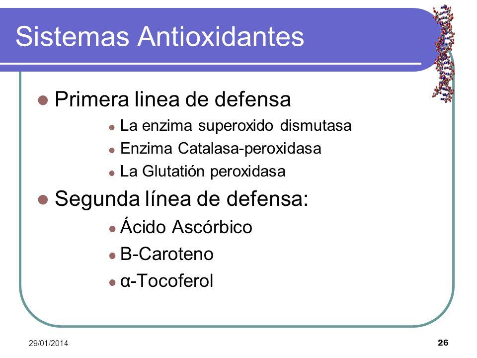 29/01/2014 26 Sistemas Antioxidantes Primera linea de defensa La enzima superoxido dismutasa Enzima Catalasa-peroxidasa La Glutatión peroxidasa Segund