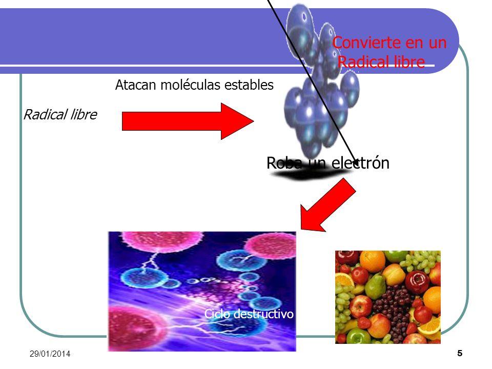 29/01/2014 5 Atacan moléculas estables Radical libre Roba un electrón Convierte en un Radical libre Ciclo destructivo