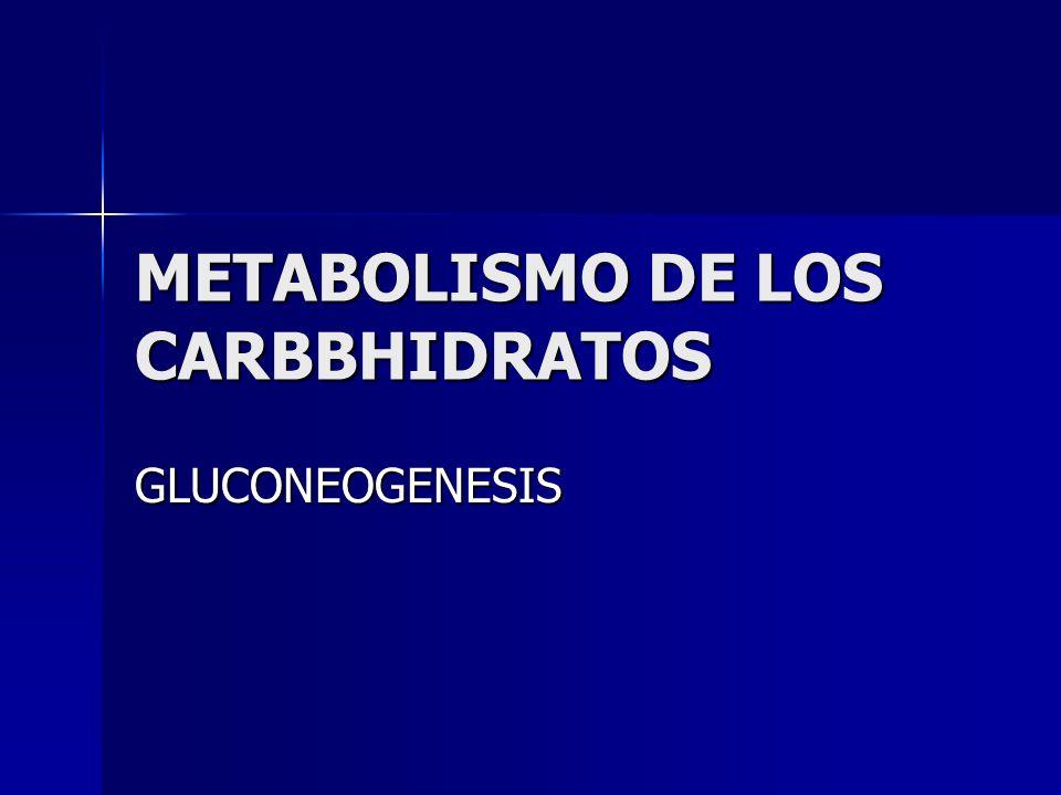 METABOLISMO DE LOS CARBBHIDRATOS GLUCONEOGENESIS