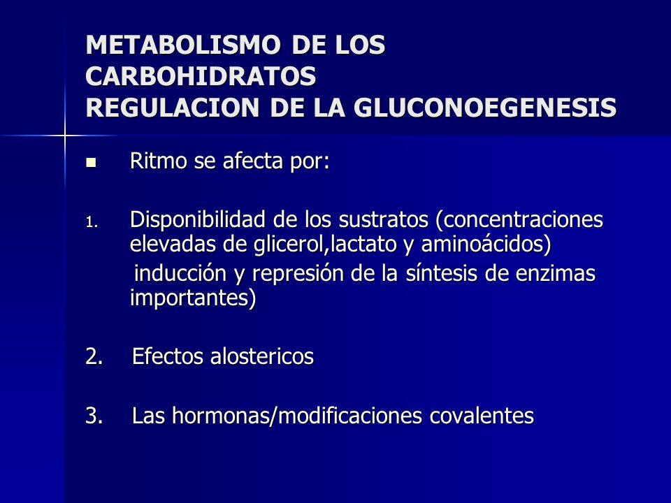 METABOLISMO DE LOS CARBOHIDRATOS REGULACION DE LA GLUCONOEGENESIS Ritmo se afecta por: Ritmo se afecta por: 1. Disponibilidad de los sustratos (concen