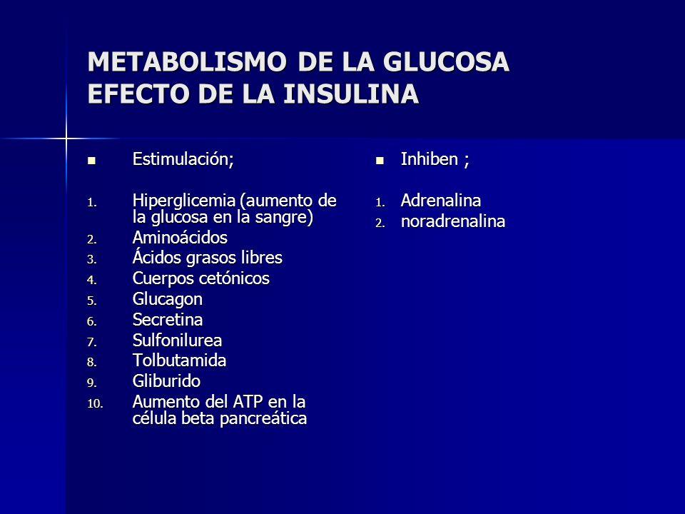 METABOLISMO DE LA GLUCOSA EFECTO DE LA INSULINA Estimulación; Estimulación; 1. Hiperglicemia (aumento de la glucosa en la sangre) 2. Aminoácidos 3. Ác