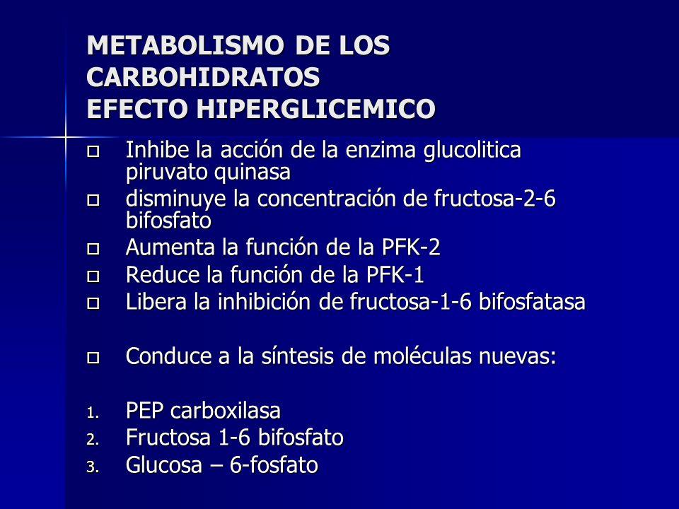 METABOLISMO DE LOS CARBOHIDRATOS EFECTO HIPERGLICEMICO Inhibe la acción de la enzima glucolitica piruvato quinasa Inhibe la acción de la enzima glucol