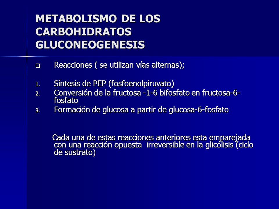 METABOLISMO DE LOS CARBOHIDRATOS GLUCONEOGENESIS Reacciones ( se utilizan vías alternas); Reacciones ( se utilizan vías alternas); 1. Síntesis de PEP