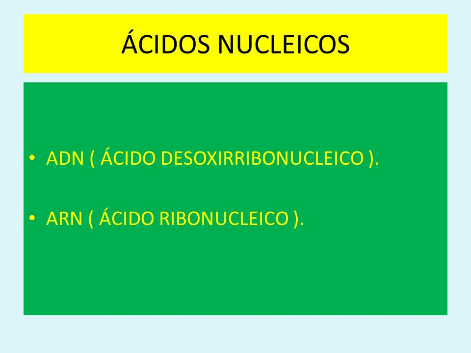 ÁCIDOS NUCLEICOS ADN ( ÁCIDO DESOXIRRIBONUCLEICO ). ARN ( ÁCIDO RIBONUCLEICO ).