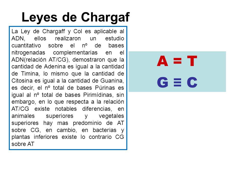 A = T G C Leyes de Chargaf La Ley de Chargaff y Col es aplicable al ADN, ellos realizaron un estudio cuantitativo sobre el nº de bases nitrogenadas co