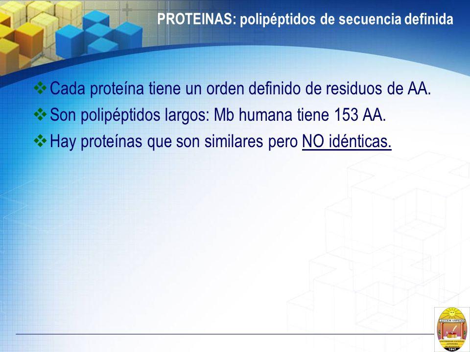 PROTEINAS: polipéptidos de secuencia definida Cada proteína tiene un orden definido de residuos de AA. Son polipéptidos largos: Mb humana tiene 153 AA
