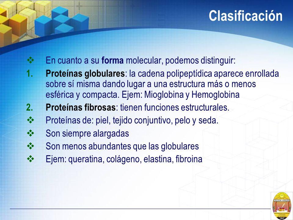 Clasificación En cuanto a su forma molecular, podemos distinguir: 1. Proteínas globulares : la cadena polipeptídica aparece enrollada sobre sí misma d