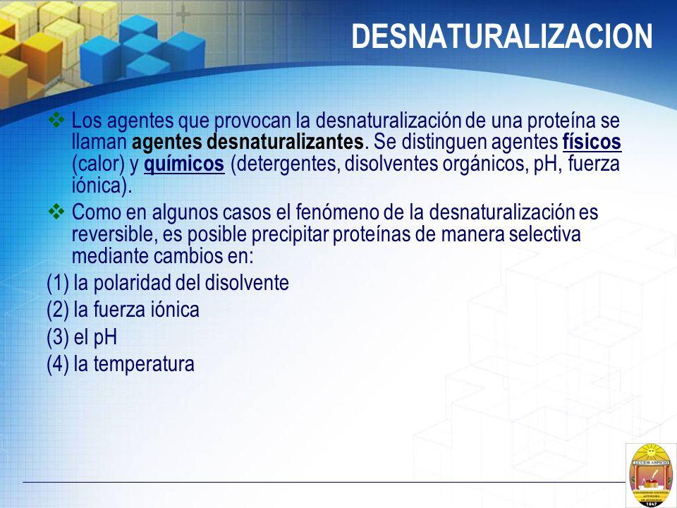 DESNATURALIZACION Los agentes que provocan la desnaturalización de una proteína se llaman agentes desnaturalizantes. Se distinguen agentes físicos (ca