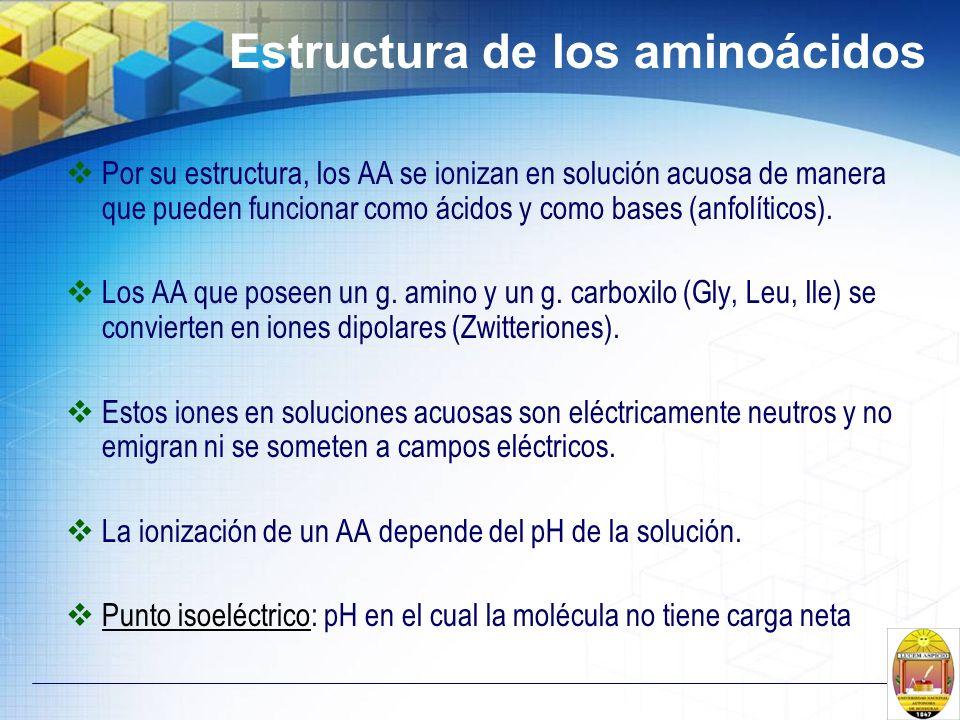 Estructura de los aminoácidos Por su estructura, los AA se ionizan en solución acuosa de manera que pueden funcionar como ácidos y como bases (anfolít