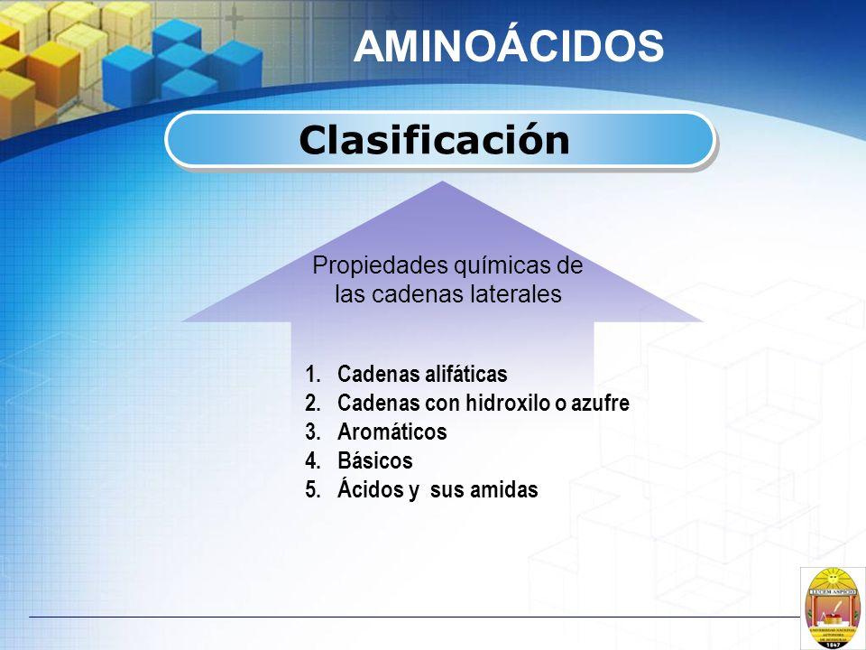 AMINOÁCIDOS Clasificación Propiedades químicas de las cadenas laterales 1.Cadenas alifáticas 2.Cadenas con hidroxilo o azufre 3.Aromáticos 4.Básicos 5