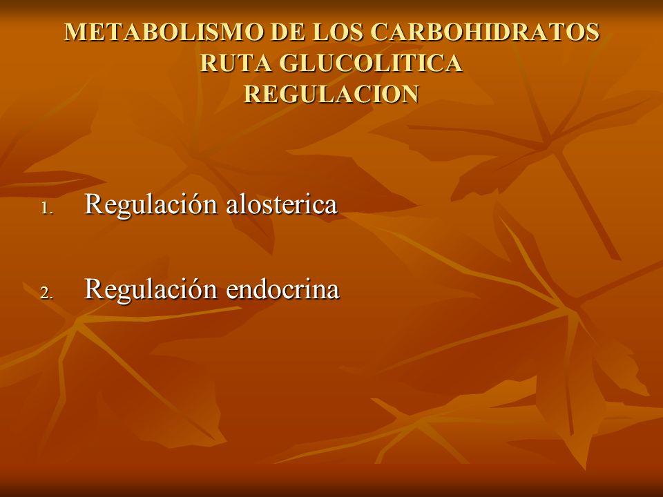 METABOLISMO DE LOS CARBOHIDRATOS RUTA GLUCOLITICA REGULACION 1.