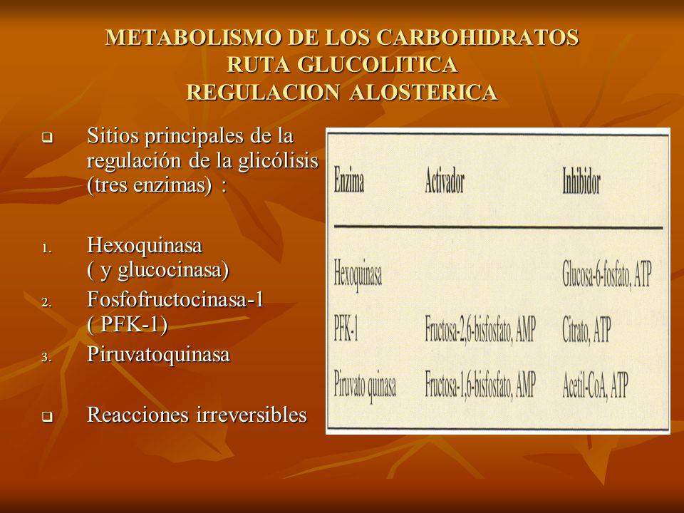METABOLISMO DE LOS CARBOHIDRATOS RUTA GLUCOLITICA REGULACION ALOSTERICA Sitios principales de la regulación de la glicólisis (tres enzimas) : Sitios principales de la regulación de la glicólisis (tres enzimas) : 1.