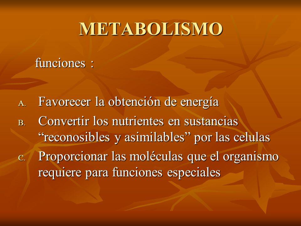 METABOLISMO funciones : funciones : A.Favorecer la obtención de energía B.