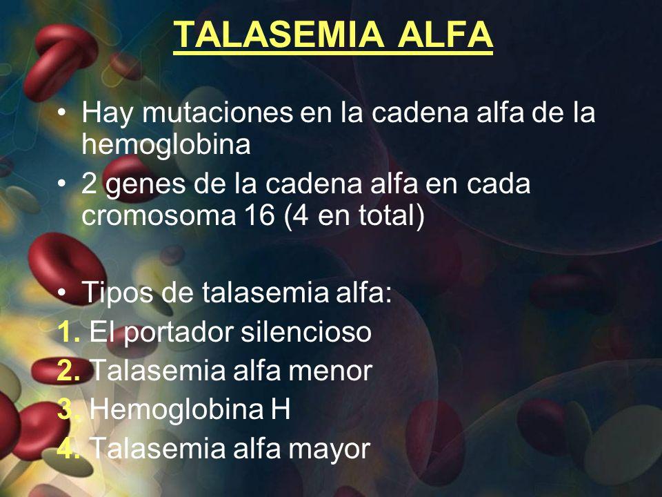 TALASEMIA ALFA Hay mutaciones en la cadena alfa de la hemoglobina 2 genes de la cadena alfa en cada cromosoma 16 (4 en total) Tipos de talasemia alfa: