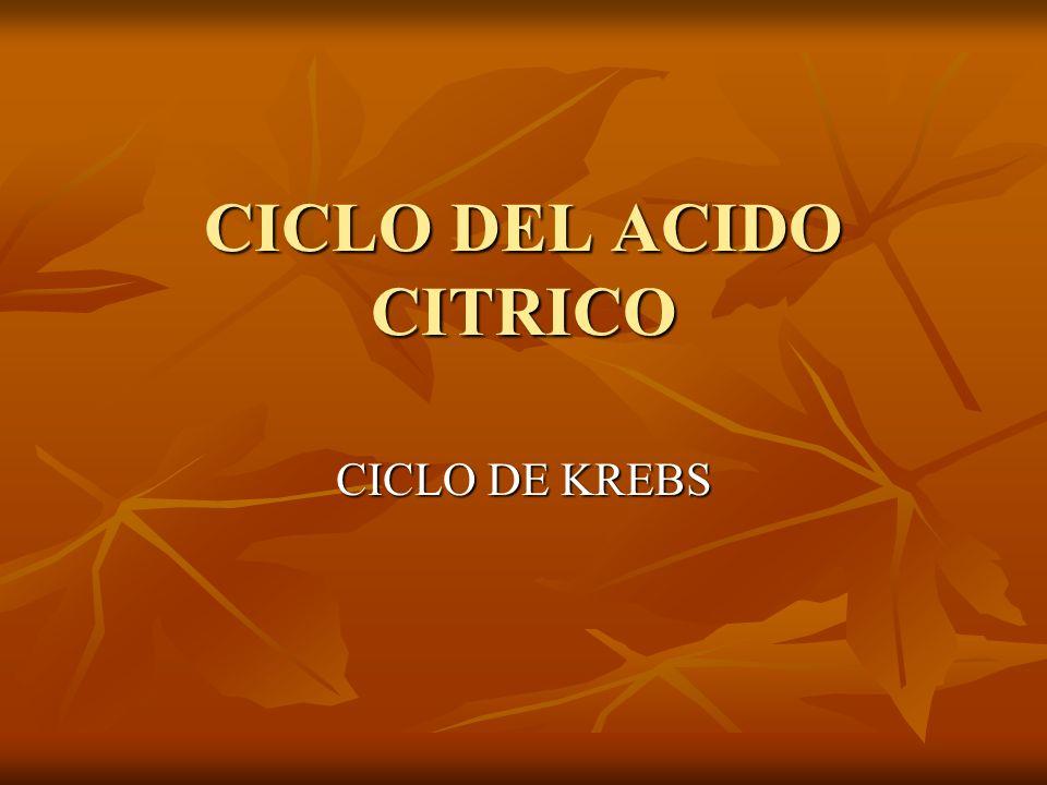 CICLO DEL ACIDO CITRICO CICLO DE KREBS