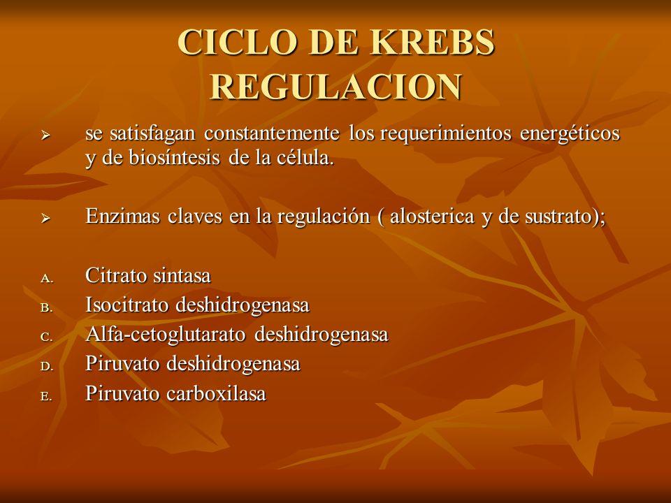 CICLO DE KREBS REGULACION se satisfagan constantemente los requerimientos energéticos y de biosíntesis de la célula. se satisfagan constantemente los