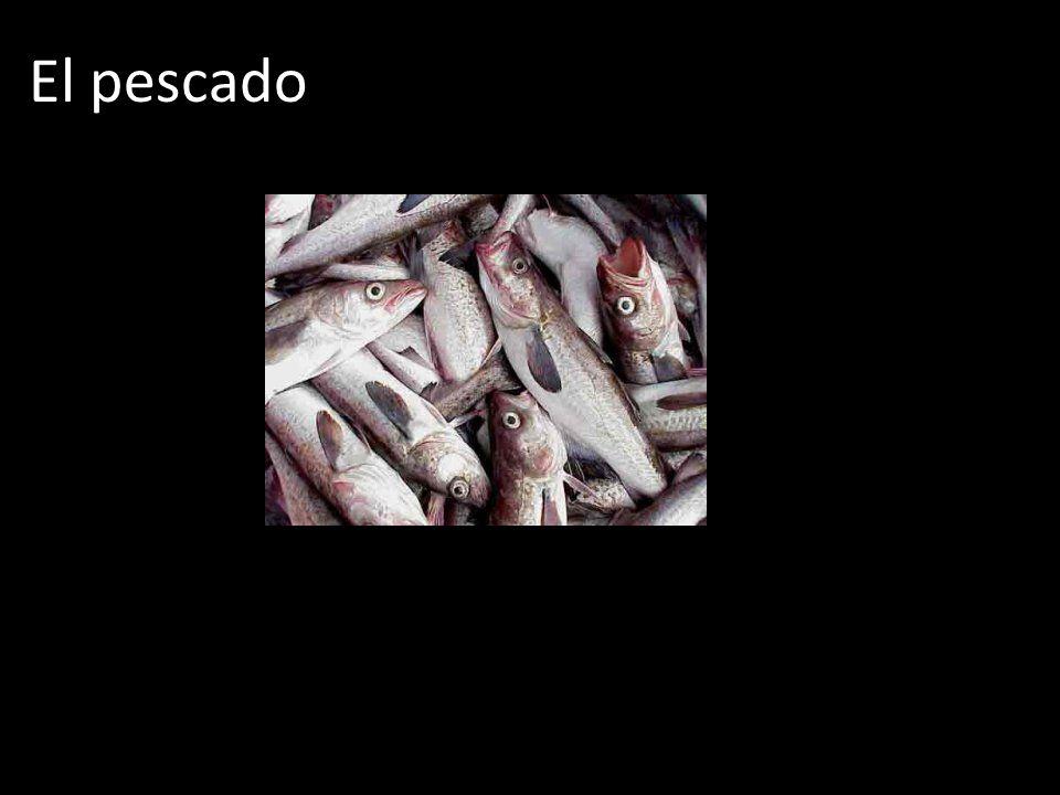 El pescado